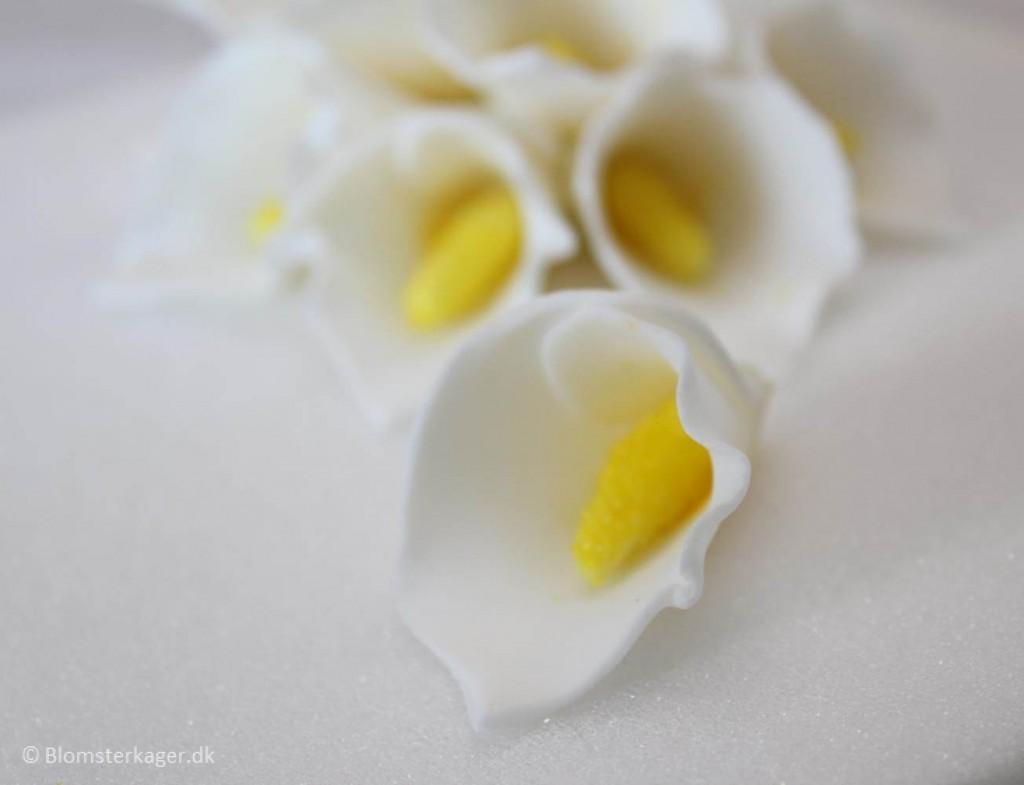 Sugar Flower Tutorials Fondant Flowers Karens Sugar Flower Blog