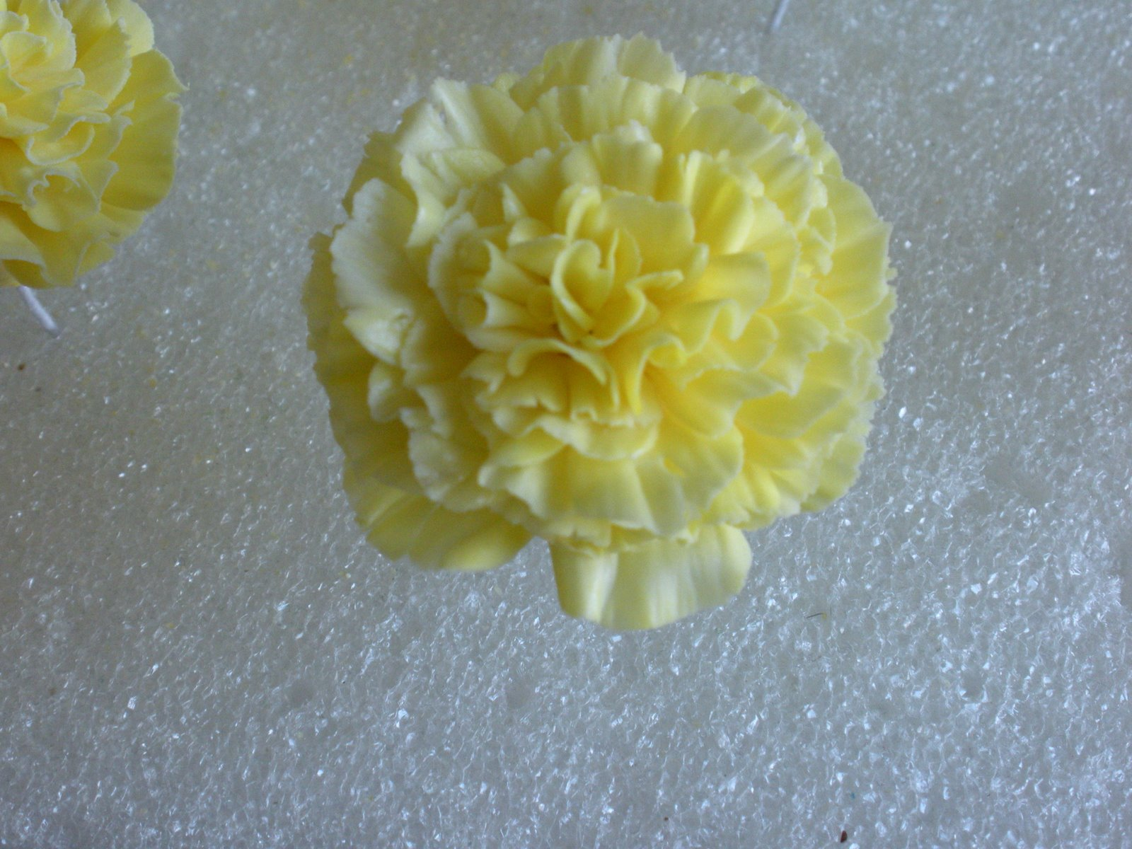 Sugar flower tutorials fondant flowers karens sugar flower blog stunning carnations by the sugar teachers izmirmasajfo