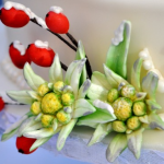 Beautiful Edelweiss flowers at CakeCentral