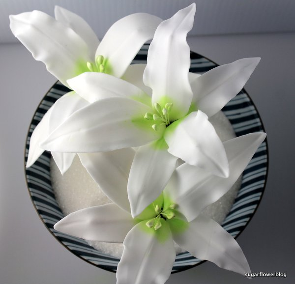 Making fondant lilies for wedding cakes and other special occasions white fondant stargazer lily 7 mightylinksfo