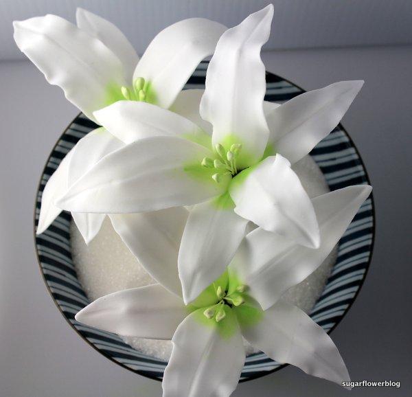 White fondant stargazer lily 7